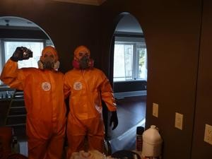 911 Restoration Mold Removal Team