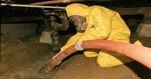 Water Damage Freeburg Technician In Crawlspace